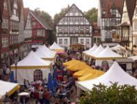 Tagesfahrt zum Weinfest in Rinteln